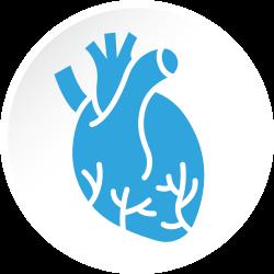 Avaliação Cardiológica Consulta Eletiva